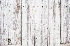 Background of wooden plank wall with peeling white color stock photography