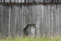 Wooden wall with a door in the middle Stock Photo