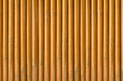Wooden wall from dry Bamboo stalks Royalty Free Stock Images