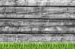 Wooden wall and green grass background stock photos