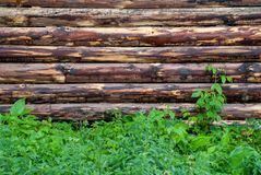 Wooden wall from logs as a background texture stock photos