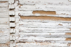 Wooden wall from logs as a background texture Royalty Free Stock Photography