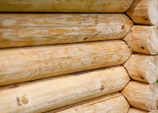 Wooden wall from logs. Texture Stock Photo