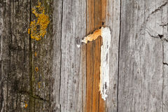 Wooden wall, number one Royalty Free Stock Image