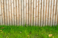 Wooden wall. Wooden planks wall with green grass Royalty Free Stock Photos