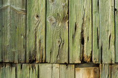 Wooden wall with rusty nails Royalty Free Stock Images