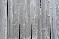 Wooden wall with texture Stock Photography