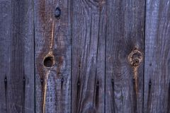 Wooden wall texture, wood background. royalty free stock image