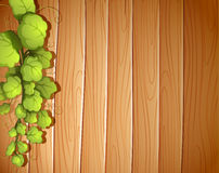 A wooden wall with a vineplant Royalty Free Stock Photo