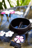 Wooden Water Bowl And Scoop Filled With Flower Petals Stock Images
