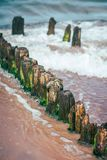 Wooden wave breakers on the beach. Old wooden breakwaters on the Baltic coast beach Royalty Free Stock Photography