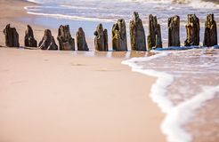 Wooden wave breakers on the beach. Old wooden breakwaters on the Baltic coast beach Stock Image