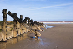 Wooden wave breakers at seaside Stock Images