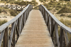 Wooden way Stock Photography