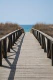 Wooden way to ocean vertical Stock Photo