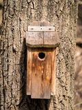 Bird house on tree Royalty Free Stock Image