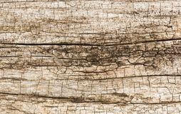 Wooden weathered wall Stock Image