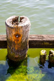 Wooden wharf Royalty Free Stock Image