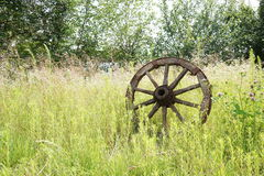 Wooden wheel on a background of green grass Royalty Free Stock Photos