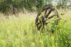 Wooden wheel on a background of green grass Stock Photos
