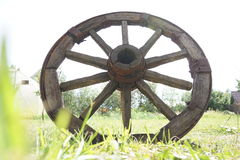 Wooden wheel on a background of green grass Royalty Free Stock Photography