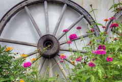 Wooden Wheel and Flowers. A wooden wheel leans against wall with flowers in front Royalty Free Stock Photo