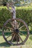 Wooden wheel of a mail coach in the green garden.  royalty free stock photos