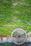 Wooden wheel on old brick wall Stock Photo