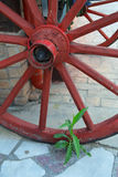 Wooden wheel. Old wooden wheel chained metal rings and painted in red represents the ornament in front of the restaurant Royalty Free Stock Photo