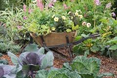 Wooden Wheelbarrow. Stock Photos