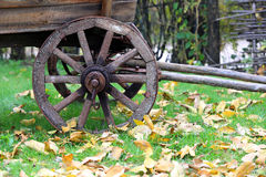 Wooden whell of vonage carriage. In autumn park Stock Photography