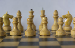 Wooden white chessmen, chess pieces stand on a chessboard in the Royalty Free Stock Photo