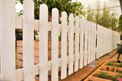 Orchard with fence Royalty Free Stock Photography