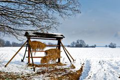 Wooden wildlife feeder in snow winter landscape royalty free stock images