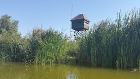 Wooden wildlife observation post. A tall wooden observation post above the reed plants in the Danube Delta Royalty Free Stock Photo