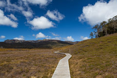 Wooden winding boardwalk in highlands of Cradle Mountain Nationa Stock Photo