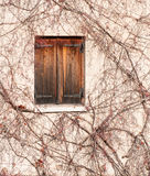 Wooden window in Autumn Royalty Free Stock Photo