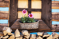 Wooden window with flowers Royalty Free Stock Photos