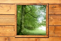 Wooden window jungle green forest view stock photo