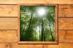 Wooden window jungle green forest view Royalty Free Stock Image