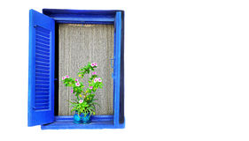 Wooden window with lace curtain and a flower pot on a white wall Stock Images