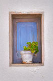 Wooden window. Mattinata. Puglia. Italy. Stock Photography
