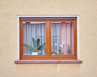 Wooden window on ocher colored wall Stock Photo