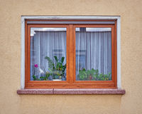 Wooden window on ocher colored wall Royalty Free Stock Photography
