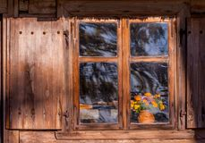 Wooden window of an old house. With shutters made of wood, on the windowsill is clay vase with autumn orange flowers, sunlit window, a photo from the outside Stock Image