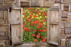 Wooden window opening with view of beautiful spring flower garden Stock Photography