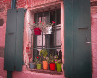 Wooden window shutters with iron bars and flowers. In pots Stock Photography