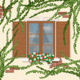 Wooden window with shutters, overgrown ivy. Royalty Free Stock Images