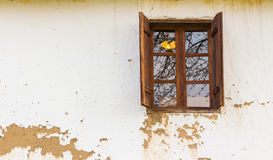 Wooden window  on wall. Wooden window  on the old upholstered wall Stock Photography
