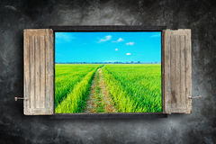 Wooden windows frame on stone wall and view of green field Royalty Free Stock Photos